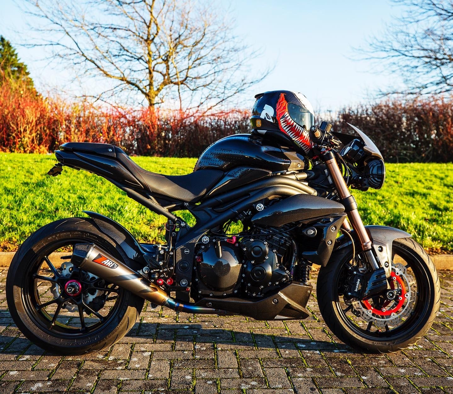 Product Review: Vee Rotors Tested on Custom Triumph Speed Triple